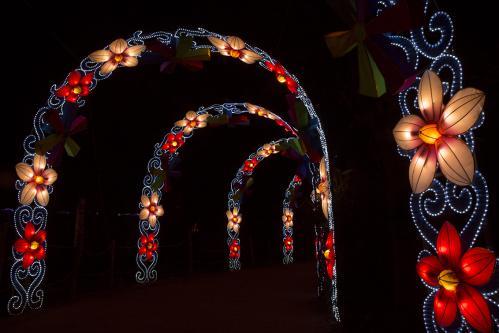China light2
