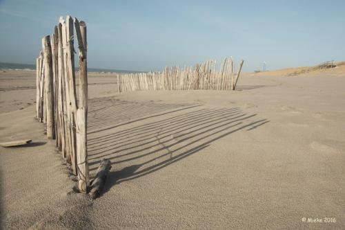 Maasvlakte strand